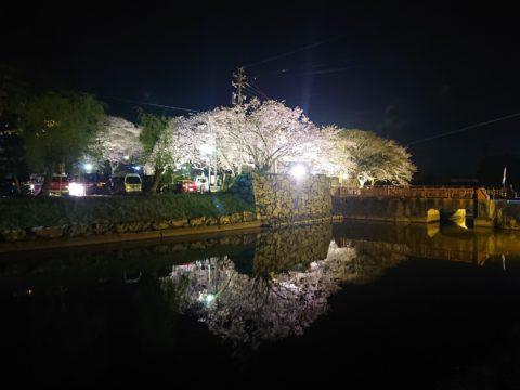 夜桜🌸Running